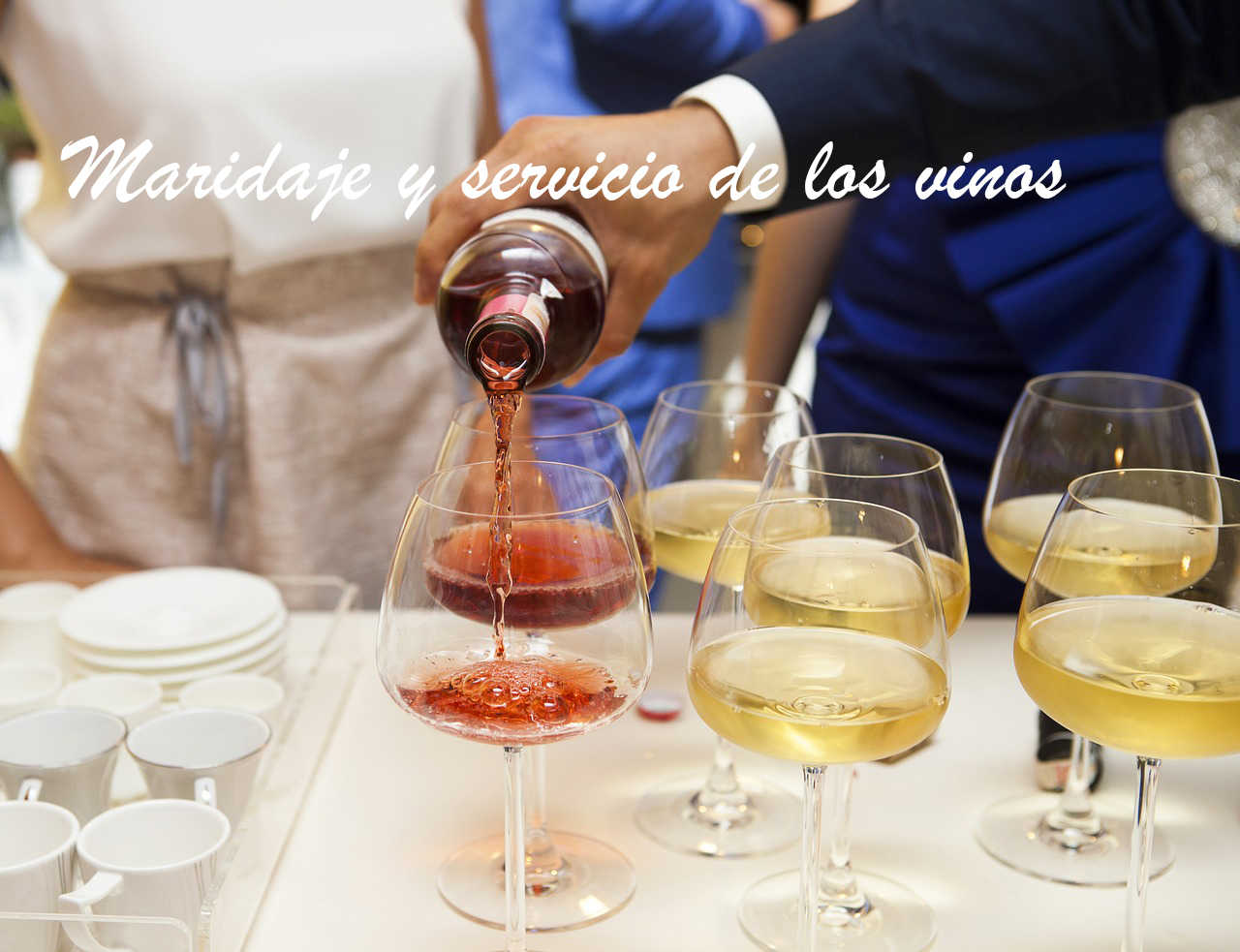 maridaje y servicio de los vinos
