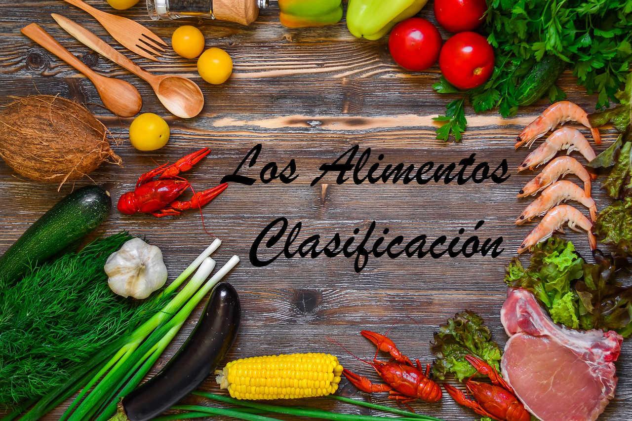 los alimentos y su clasificacion